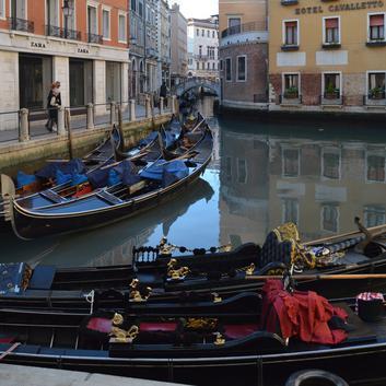 Каналы Венеции после введения карантина