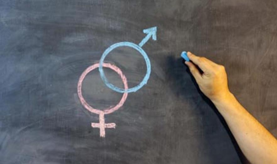 Родители против сексуального просвещения в школах