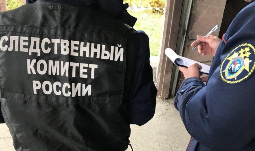 В СК РФ организовали спецотдел по борьбе с преступностью, связанной с COVID-19